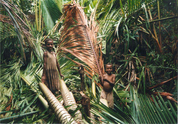 Image of two children from Kagiru village with a Sago palm