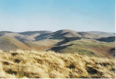Duke of Edinburgh Award - Cheviot Hills in early spring
